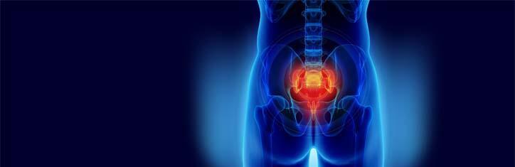 Körper im Lot – Fruchtbarkeit zurück – Becken- und Wirbelsäulen-Übungen für die Wunsch-Familie