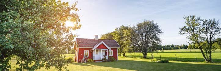 Tiny-Haus, Tiny-Wohlfühlhaus – selbst gebaut, autark und öko
