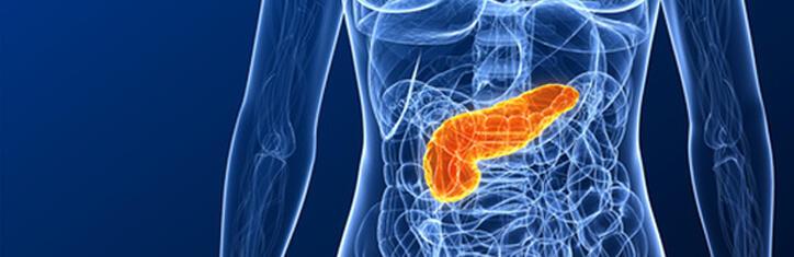 insulina volkskrankheit diabetes ppt