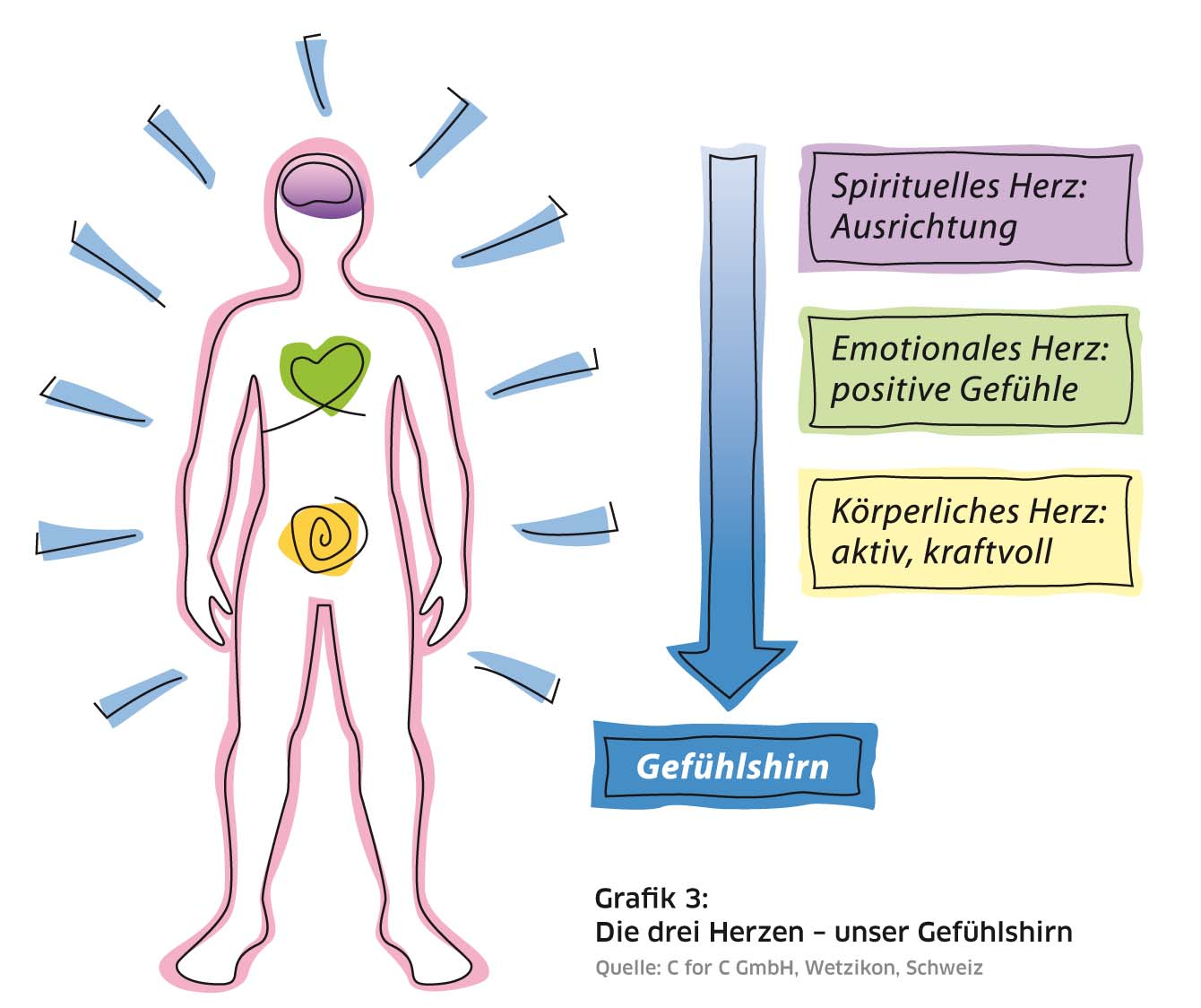 Atemberaubend Herzanatomie Diagramm Etikett Bilder - Menschliche ...
